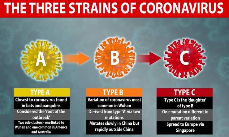 کشف ۳ نوع کروناویروس توسط محققان کمبریج