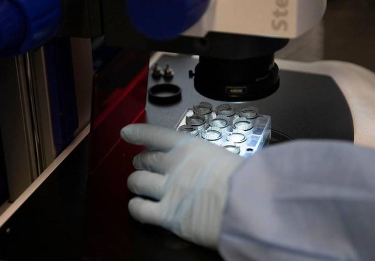 کشف ویروس خطرناکتر از کرونا در قزاقستان