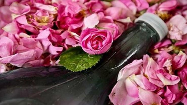آشنایی با خواص شگفت انگیز گلاب
