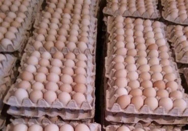 مقابله با گرانفروشی تخممرغ در خراسان رضوی | نظارتها تشدید میشود