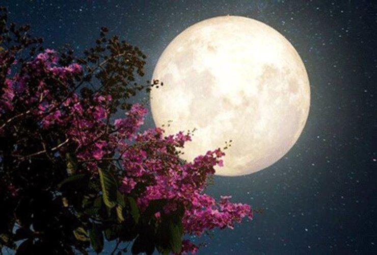 تصاویر «ابر ماه صورتی» در آسمان ایران + فیلم